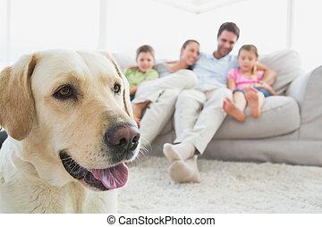 Familia feliz sentada en el sofá con su labrador mascota en primer plano en la sala de estar
