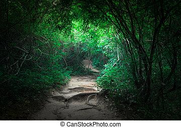 Fantasía selva tropical selva con túnel y camino