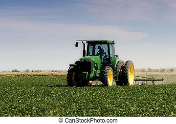 Farmer arando el campo