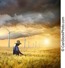 Farmer revisando su cosecha de trigo