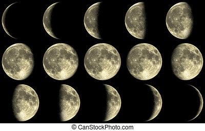 fases, lleno, -, luna amarilla