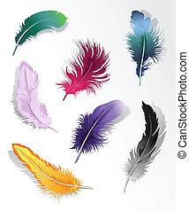 feather%u2019s, conjunto, multicolor