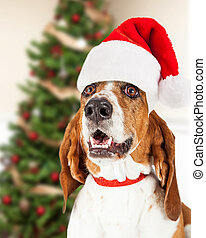Feliz Navidad Santa perro por árbol
