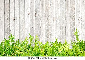 Fern se va de madera