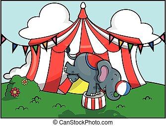 Festival de la atracción del circo de elefantes