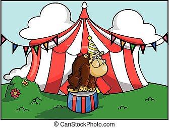 Festival de la atracción del circo gorila