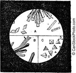 Fig. 3. Cristales de hemoglobina en la sangre del hombre. Cristales B de hemoglobina del gato. Cristales de hemoglobina de la sangre de conejillos de Indias, grabados antiguos.