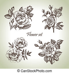 Fijo floral. Manos dibujadas ilustraciones de rosas
