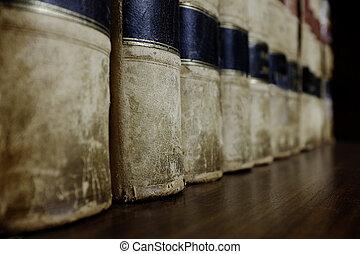 Fila de libros de leyes en la estantería