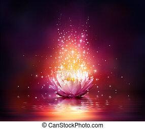 flor, agua, magia