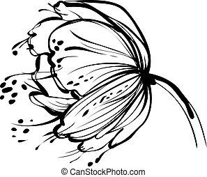 flor blanca, brote