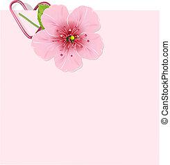 flor, cereza, carta