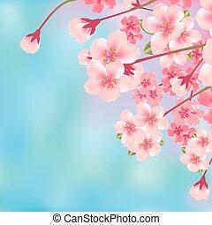 flor, cereza, resumen