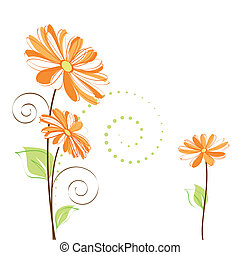 flor, colorido, primavera, plano de fondo, margarita, blanco