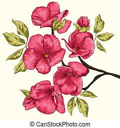 Flor de cerezo. Sakura Flowers. Antecedentes florales. Branch con P