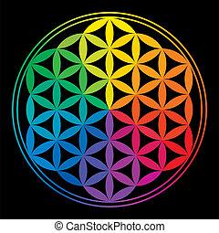 Flor de colores del arco iris de la vida