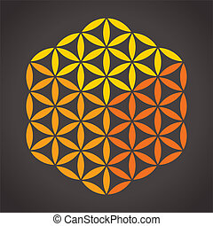 Flor de cubo de la vida