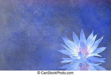 Flor de loto de fondo texturizado