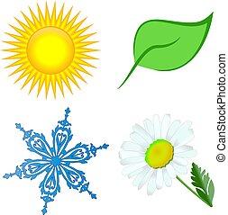 Flor de nieve de hoja solar