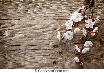 Flor de primavera en la madera
