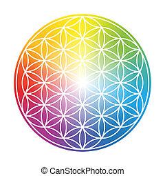 Flor de vida colorida y circular gradiente arco iris