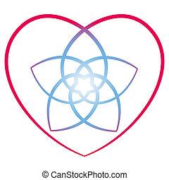 Flor del corazón venus