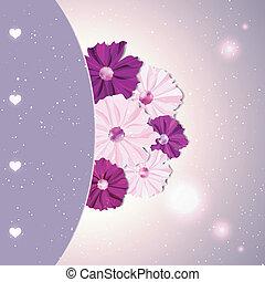 Flor del cosmos colorido primavera