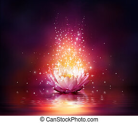 Flor mágica en el agua