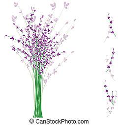 flor púrpura, lavanda, verano