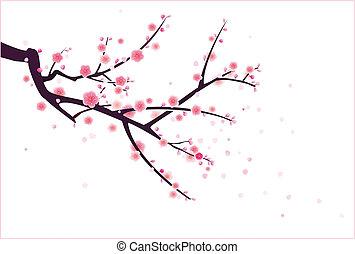 flor, plum/cherry