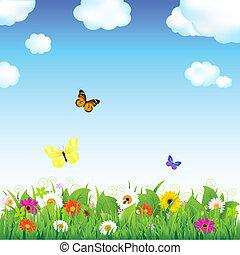 flor, pradera, mariposas