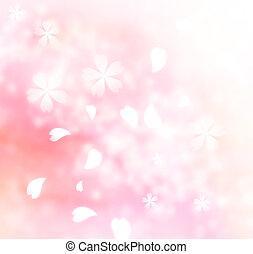 flor rosa, suave, plano de fondo