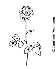 Flor rosada aislada en el fondo blanco