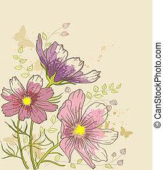 floral, cosmos, flores, plano de fondo