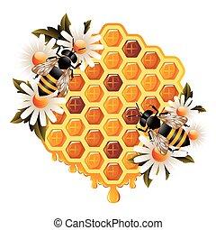 floral, miel, concepto