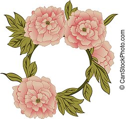 floral, peonías, marco