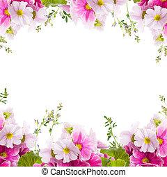 floral, primavera, primavera, plano de fondo, ramo