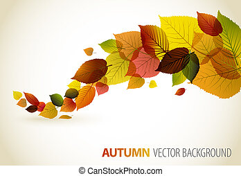 floral, resumen, plano de fondo, otoño