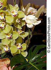 Flores 90