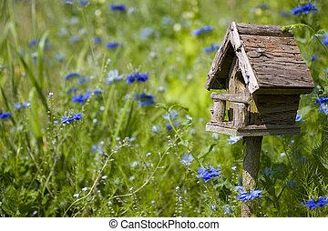 flores, birdhouse, y