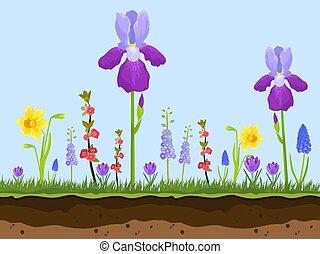 Flores de campo de Artoon, hierba verde y capas de tierra en ilustración vectorial azul de fondo. Rosa, manzanilla y lavanda iris. Flores de primavera y verano.