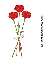 Flores de clavel
