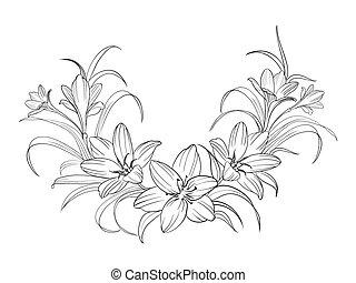 Flores de Crocus.