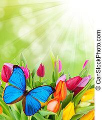 Flores de primavera con mariposa