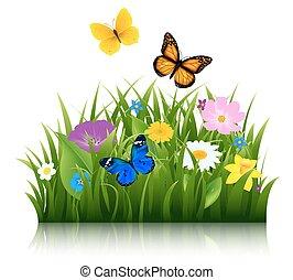 Flores de verano con mariposa