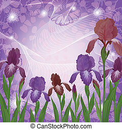 Flores Iris e Ipomoea contornos