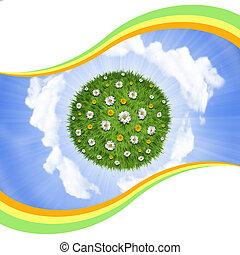 flores, naturaleza, cielo, planeta, fondo verde, pasto o césped