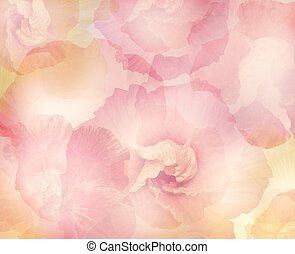 flores, resumen, hibisco, plano de fondo