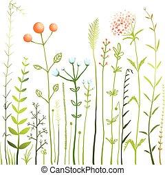 Flores y hierba en la colección de praderas blancas