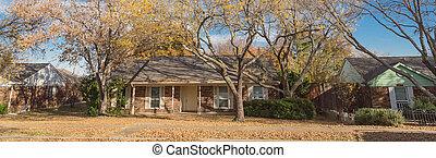 follaje, colores, otoño, historia, dallas, panorámico, brillante, suburbios, solo, casas, bungalow